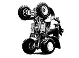 QUAD/ ATV 4x4